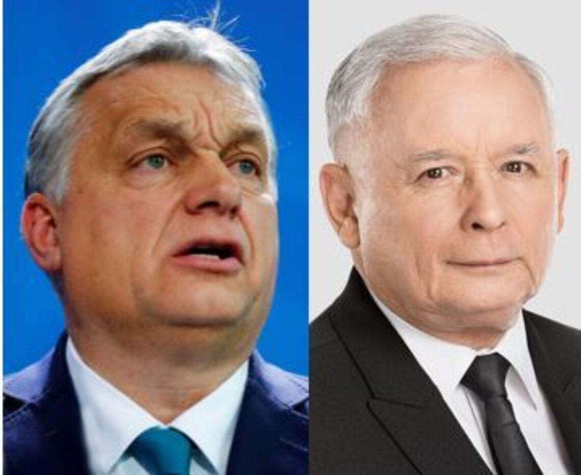 Orban and Kaczynski